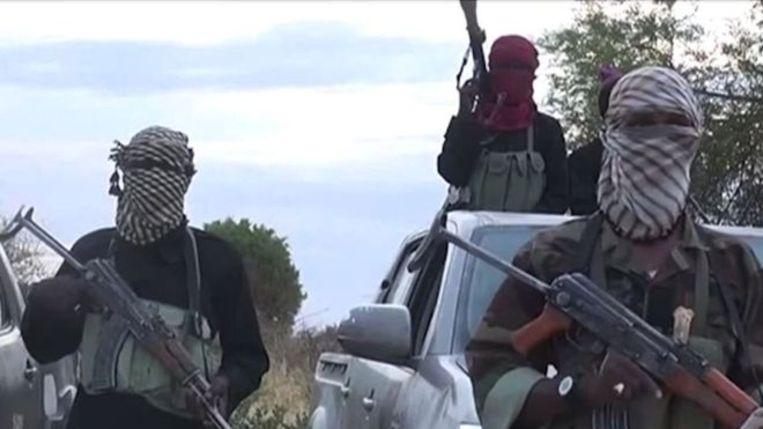 ISWAP komt voort uit een breuk binnen terreurgroep Boko Haram.