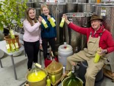 Limoncello van de wijngaard in Dieren, dankzij een geërfd citroenboompje
