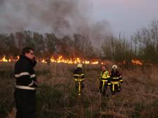 Slecht bereikbare natuurbrand in Biesbosch snel onder controle met blusboot