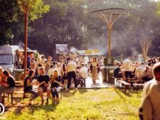 Feesten tussen de maïs: veld aan rotonde Wommelgem  hele zomer ingepalmd voor muziek en theater