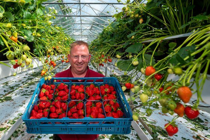 Arno de Beijer van aardbeienkwekerij De Beijer.