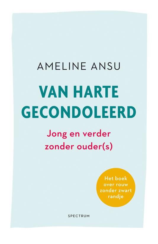 Cover van het boek dat vanaf 3 februari te koop is. Het kost 17,99 euro.
