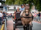 Pony- en paardenmarkt Enter geschrapt: 'veiligheid staat voorop'