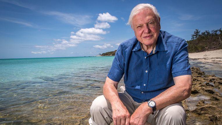 De Britse bioloog David Attenborough (89). Beeld EPA