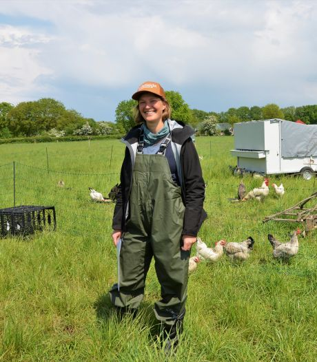 Stadslandbouw wint rond Nijmegen snel terrein: van zelfpluktuin tot grazende kippen