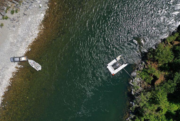 Door de droogte is de waterstand van de Klamathrivier veel lager dan gewoonlijk, en het water veel warmer.  Beeld AFP