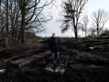 Staatsbosheer haalt duizenden bomen weg uit natuurgebied Willinks Weust en stuit op onbegrip