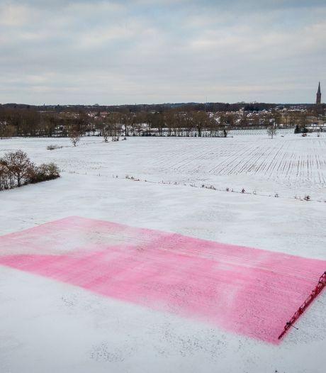 Wow! In dit weiland bij Steenwijk ligt een enorme Mona Lisa in de sneeuw: 'Gaan voor wereldrecord'