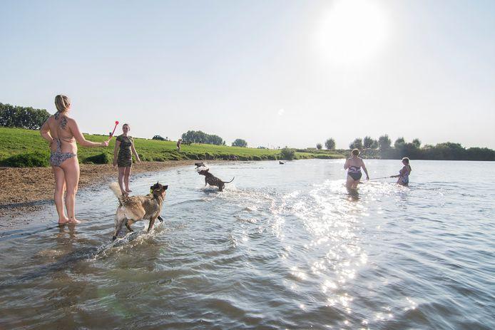Recreanten mogen al vanaf woensdag 3 juni zwemmen en van de zon genieten op recreatieterrein De Gravenbol tussen Amerongen en Wijk bij Duurstede