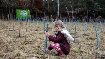 Vrijwilligers planten 3.500 bomen en struiken in vier uur tijd