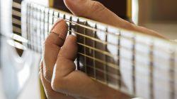 Amerikaan opgepakt voor akoestische set met covers van Pink Floyd voor zijn deur