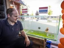 Sluierstaart Frank de (vis)Boer voorspelt in aquarium van Lutter speciaalzaak de winnaar van EK-duels Oranje