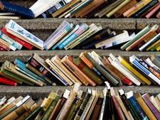 Fusie tussen bibliotheken Salland, Ommen en Dalfsen-Nieuwleusen van de baan