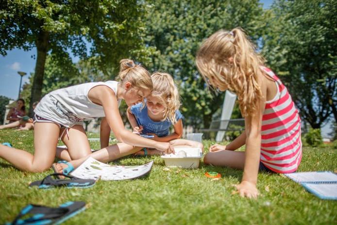 Demy, Cato en Eva zijn beestjes aan het determineren die ze in het water van het Catharinapark in Wouw hebben aangetroffen. foto Marcel Otterspeer/Pix4Profs