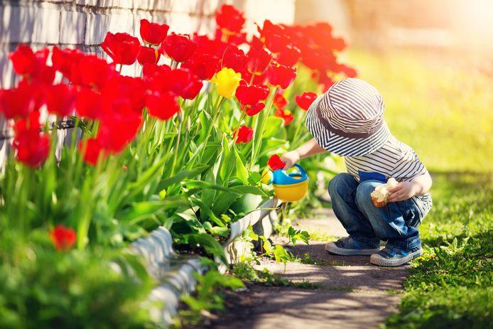 In de tuin liggen er voor een kind best wat gevaren op de loer, zeggen specialisten.