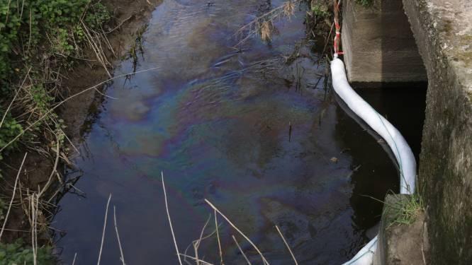 Greenpeace bekijkt verdere juridische stappen om betere waterkwaliteit af te dwingen