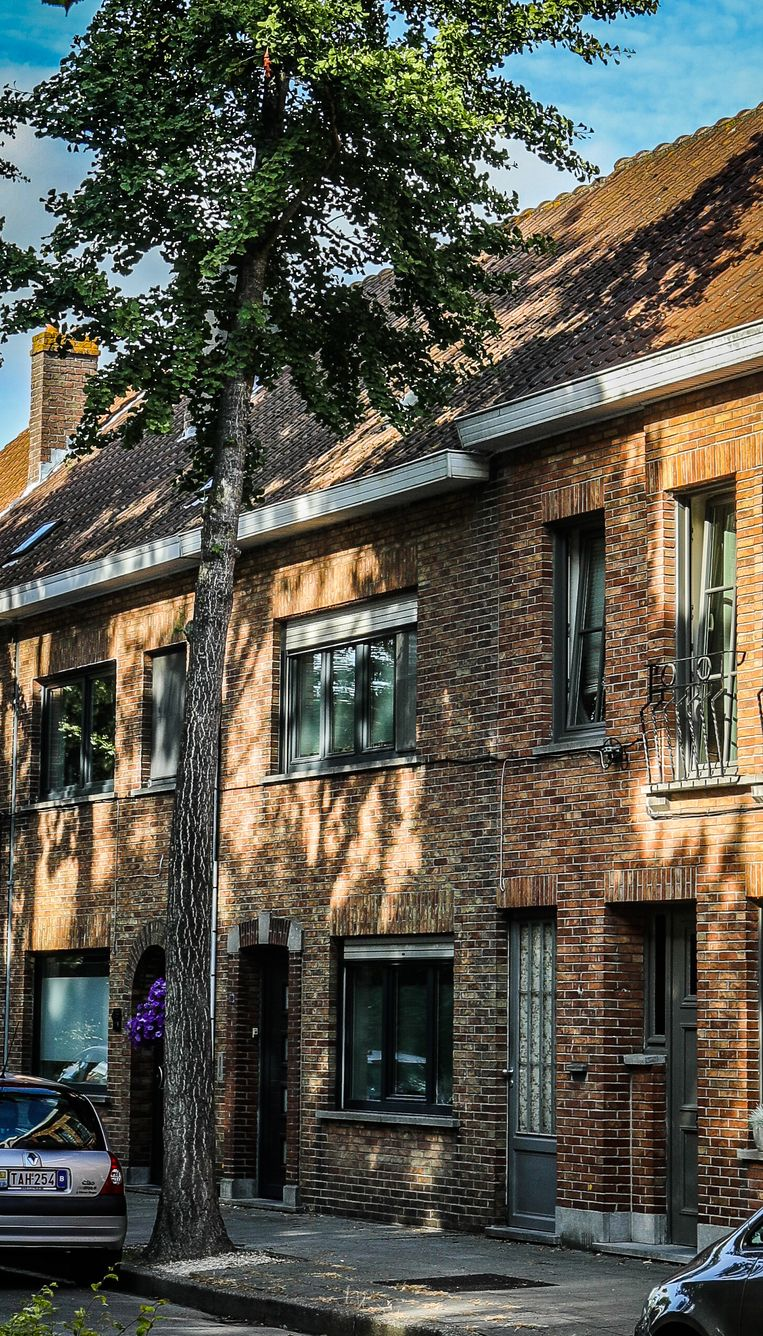 Brugge actie bewoners st pietersstatiedreef protesteren: bomen groeien boven de dakgoten uit