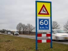 Veel aanrijdingen met wild: GroenLinks wil maximumsnelheid op N224 tussen Ede en Arnhem verlagen