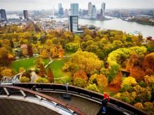 Vijf miljoen en een jaar samen werken aan renovatie: 'Genot om te zien hoe mensen het Park hebben herontdekt'
