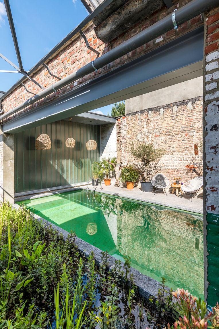 De groene ondergrond geeft het zwembad een natuurlijke look. De plantenfilter en de tanks met regenwater maken de installatie honderd procent ecologisch.    Beeld Luc Roymans
