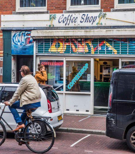 Dit zijn de coffeeshops van het Westland: ze staan in Den Haag, Delft en Hoek van Holland
