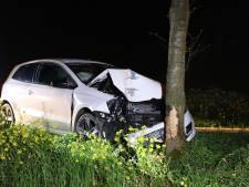 Auto knalt op boom in Dodewaard, bestuurder naar ziekenhuis