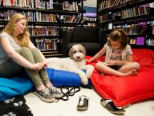 Hulphond Nederland krijgt liefst vier ton voor het voorlezen aan honden