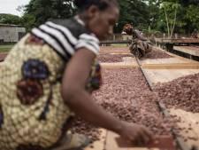 Madagascar, le paradis du cacao