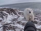 Rus verjaagt levensgevaarlijke ijsbeer