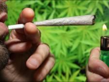 Le tabac encrasse bien plus les artères que le cannabis