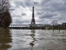 """Les variants connaissent une """"croissance exponentielle"""" en région parisienne"""