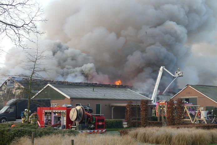 In februari brandde in Woudenberg een grote kippenschuur af. Ook in Kootwijkerbroek vielen stallen ten prooi aan de vlammen.