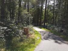 Man (41) uit Venray opgepakt voor zedendelict in bossen bij Overloon