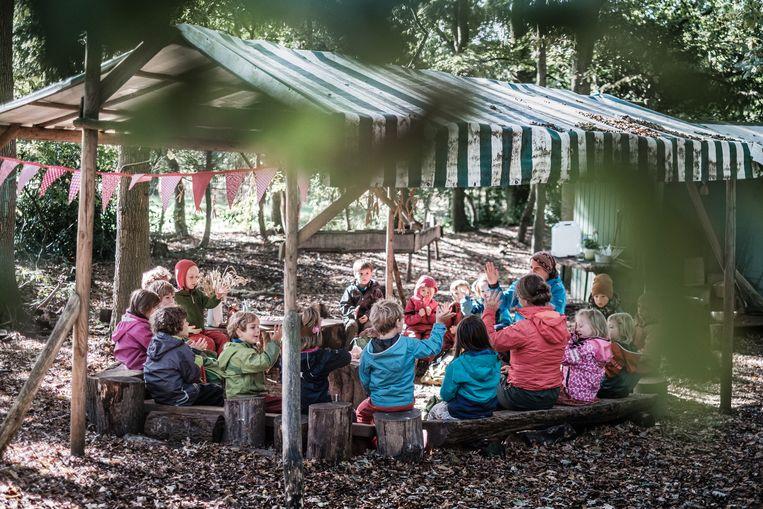 De kleuters van de Guido Gezelleschool in Brugge hebben een klasje buiten in het bos.  Beeld Bob Van Mol