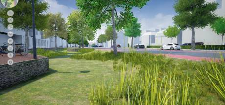 Tegels maken op veel plekken in Enschede plaats voor planten