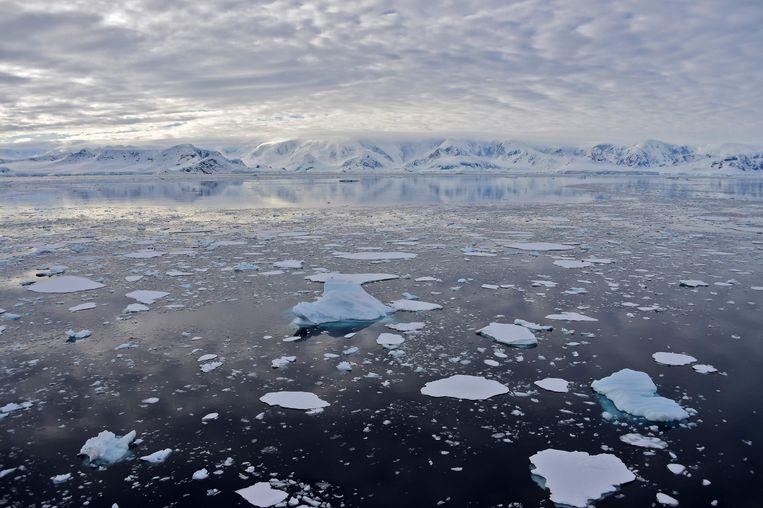 Een gletsjer in de Chiriguano-baai van Antarctica. Beeld AFP