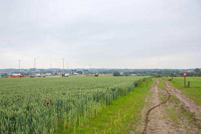 Een gigantisch natuurgebied aan de grens met de drukke Brusselse ring.