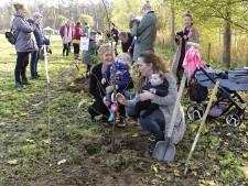 Geboortebos Schijndel breidt uit met zeker 500 bomen