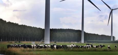 Zo ziet ons platteland eruit ná de stikstofcrisis