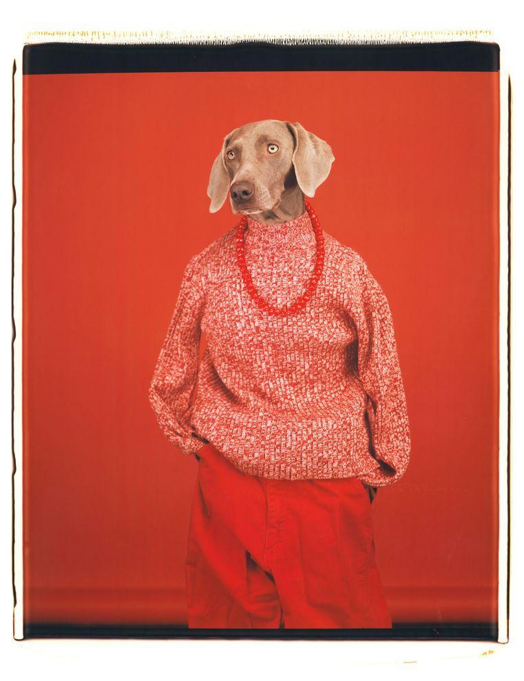 'Casual' (2002). Beeld William Wegman