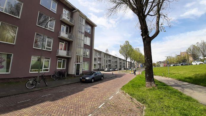 De verouderde flats van Woonbron aan de Noordendijk in de Vogelbuurt.