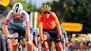 Van Avermaet en co hebben rit 14 ongetwijfeld aangestipt: de klassieke renners zijn vandaag aan zet