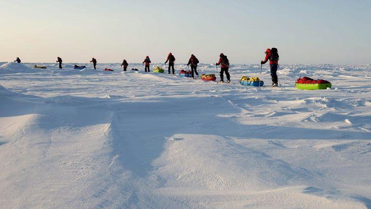 Een groep poolreizigers op expeditie in het Noordpoolgebied. Beeld epa