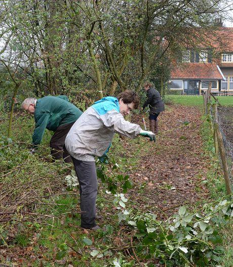 Buiten klussen en tuinieren: NL Doet durft het weer aan