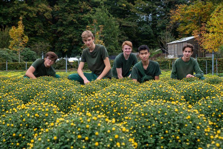 Leerlingen van de tuinbouwafdeling werken aan de voorbereiding van de grote Herfstverkoop op de Tuinbouwschool in Melle.