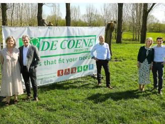 Binnendeurfabrikant De Coene koopt site Lapauw in Heule