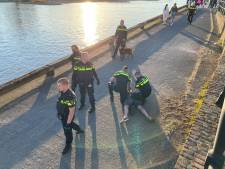 Grote vechtpartij langs de IJssel in Deventer, politie verricht meerdere aanhoudingen