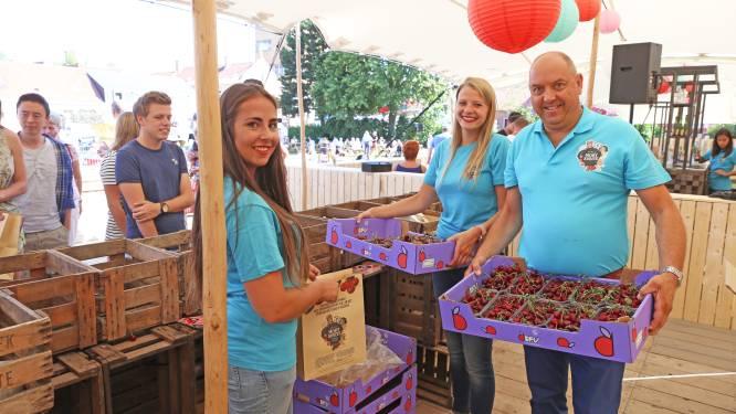 Mort Subite uit Kobbegem ontvangt weldra 45 ton vers geoogste krieken voor hun wereldbefaamde kriekbieren