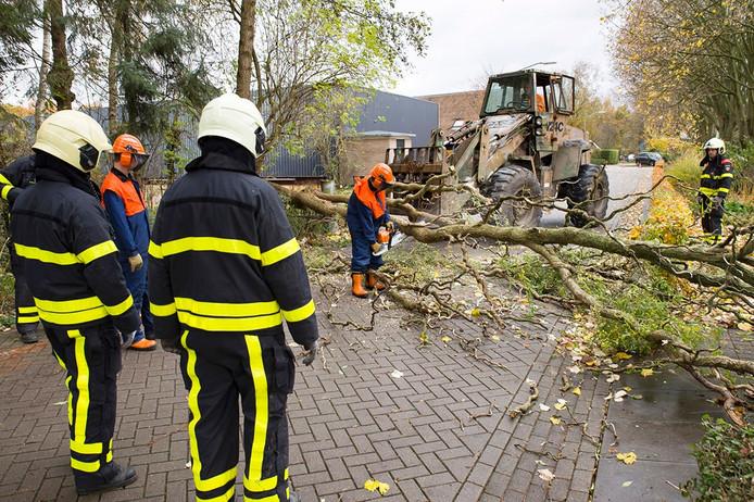 Opruimen van omgewaaide boom in de Oude Kerkstraat in Made Foto Marcel van Dorst – MaRicMedia.nl