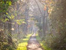 Critici natuurbegraafplaats Kalenberg mogen alternatief plan bedenken, maar is er genoeg tijd?